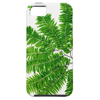 Fern no 5 home decor iPhone 5 cover