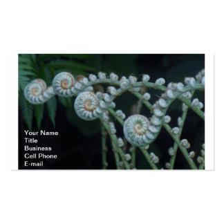 Fern Photograph Business Card