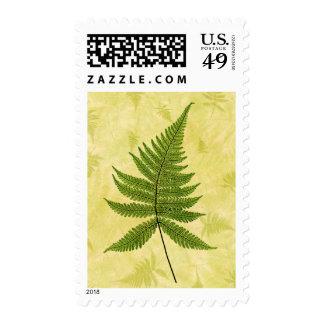 Fern Postage Stamp