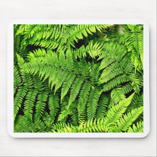 Fern Poster Mouse Pad
