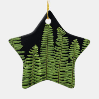 Fern Row Christmas Tree Ornaments