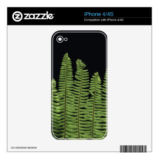 Fern Row Decal For iPhone 4