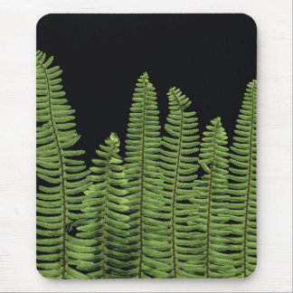 Fern Row Mouse Pad