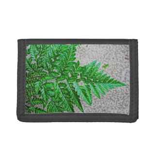 fern sideways sketch plant tri-fold wallets