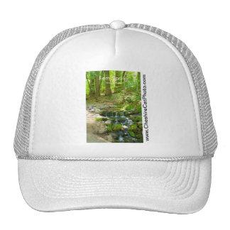 Fern Spring July Yosemite California Products Mesh Hats