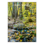 Fern Spring October Yosemite California Products Cards
