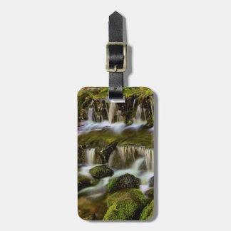 Fern Spring, Yosemite National Park, California Luggage Tag