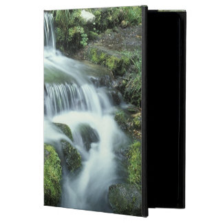 Fern Spring, Yosemite National Park Case For iPad Air