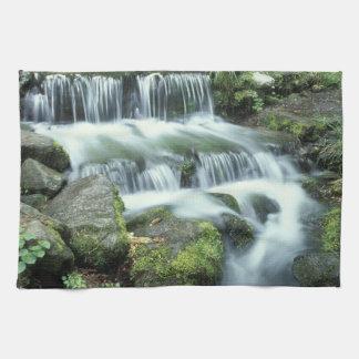 Fern Spring, Yosemite National Park Kitchen Towels