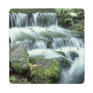 Fern Spring, Yosemite National Park Puzzle Coaster