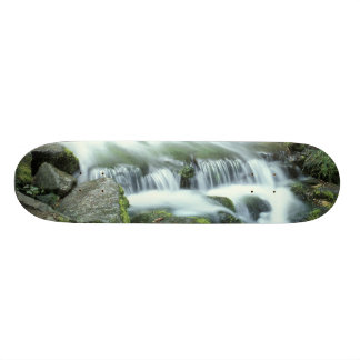 Fern Spring, Yosemite National Park Skateboard Deck