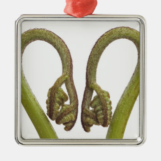 Fern sprouts 2 metal ornament
