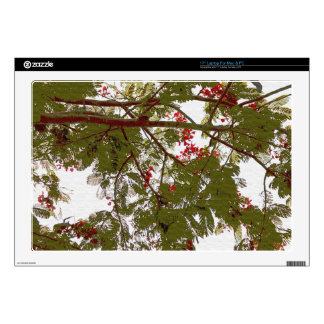 Fern Tree Red Flowers and Brown Branches Canvas Laptop Decals