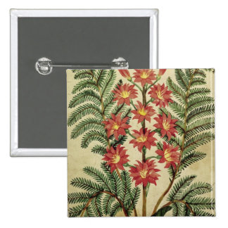Fern with red and yellow flowers 2 inch square button