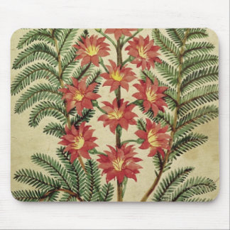 Fern with red and yellow flowers mouse pad