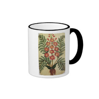 Fern with red and yellow flowers ringer coffee mug