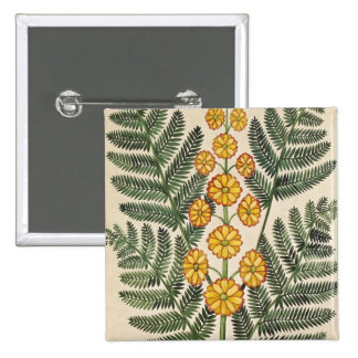 Fern with yellow flowers 2 inch square button