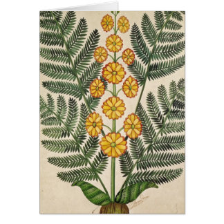 Fern with yellow flowers greeting card