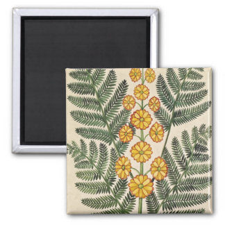 Fern with yellow flowers 2 inch square magnet