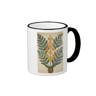 Fern with yellow flowers ringer coffee mug
