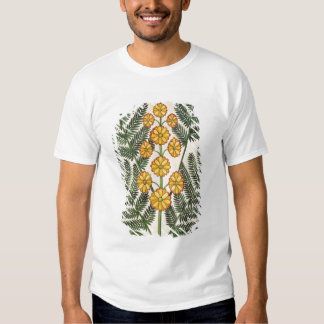 Fern with yellow flowers shirt