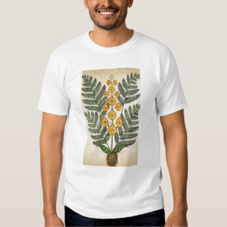 Fern with yellow flowers tee shirt