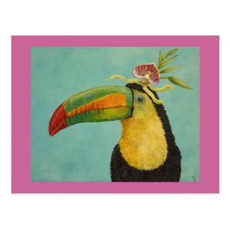 Fernando la postal toucan