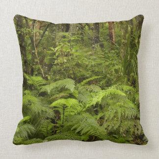 Ferns and native bush near Matai Falls, Catlins Throw Pillows