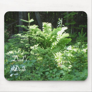 Ferns and Pines in Sunlight Mouse Pad