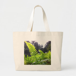 Ferns at Angels Rest, Oregon Bags