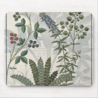 Ferns, Brambles and Flowers Mouse Pad