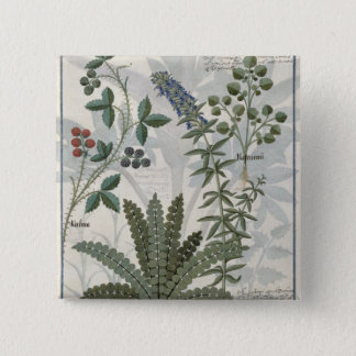Ferns, Brambles and Flowers Pinback Button