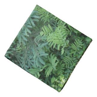 Ferns-Horsetails Bandana