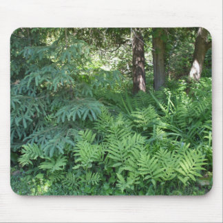 Ferns -Horsetails Mouse Pad