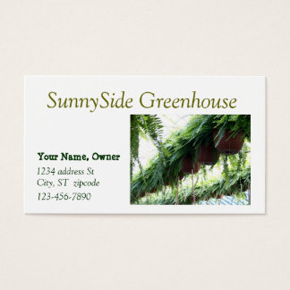 Ferns in hanging baskets business card