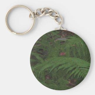 Ferns Key Chain