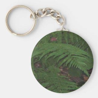 Ferns Keychains