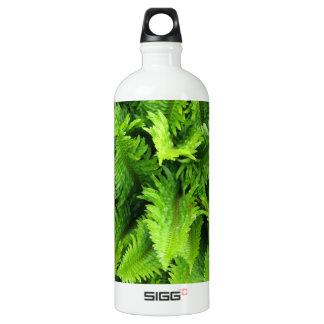 Ferns Olympia Farmer's Market garden Water Bottle
