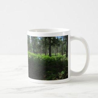 Ferns on Sedona Oak Creek Canyon Rim Coffee Mug