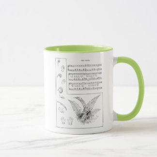 Ferns Song with Finger Play Mug