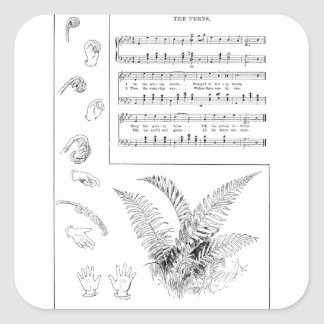 Ferns Song with Finger Play Square Sticker