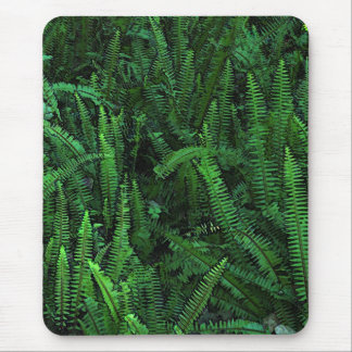 Ferns with Clover Mousepads