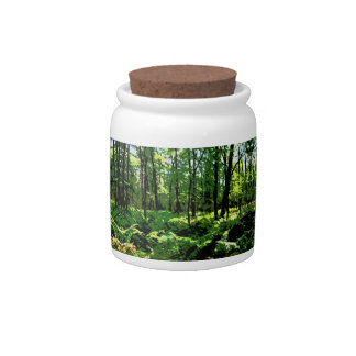 """""""Ferny Forest"""" Candy Dish"""