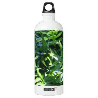 Ferny Getaway Water Bottle