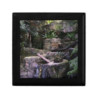 Ferny grotto gift box