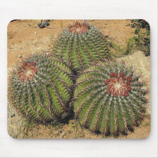Ferocactus - cactus de barril tapetes de ratón