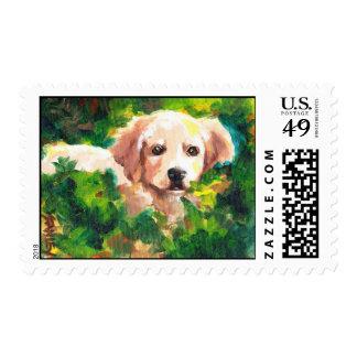 Ferraro's Sammi Stamps