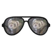 Ferret Aviator Sunglasses