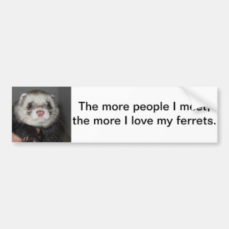 Ferret Bumper Sticker