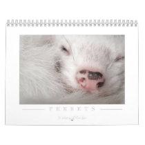 Ferret Calendar - 2nd Edition